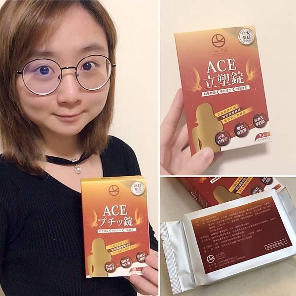 上日研ACE立塑錠1.JPG