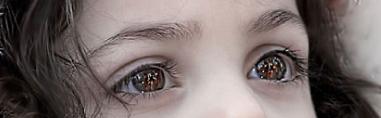 天使的眼睛