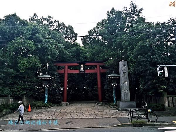 東京根津神社 (5).JPG