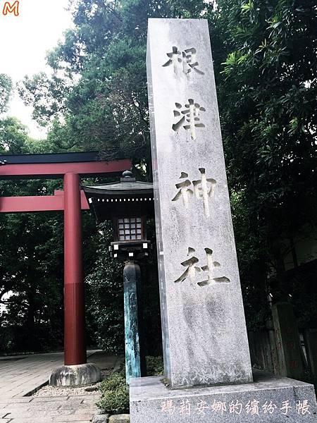 東京根津神社 (7).JPG