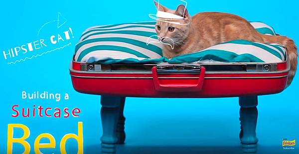 DIY Cat Toys - How to Make a Suitcase Bed - YouTube-1.jpg