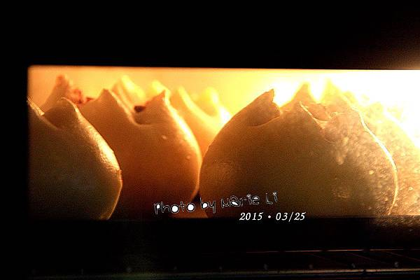 肉鬆火山包-07