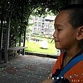 SAM_0471.jpg