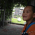 SAM_0472.jpg