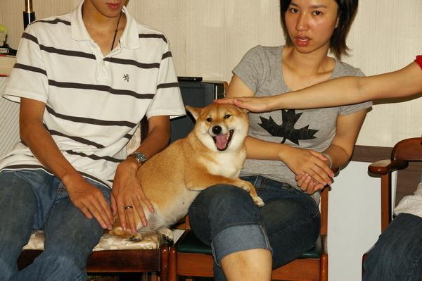 20080629Marie狗狗派對 2008-06-29 047.JPG