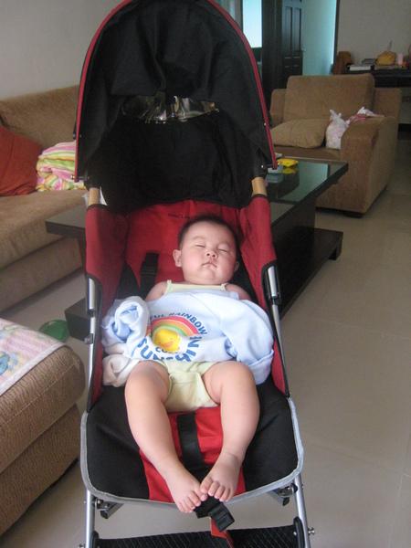 第一次拍睡著的Nana