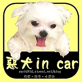 惡犬in car-3.jpg