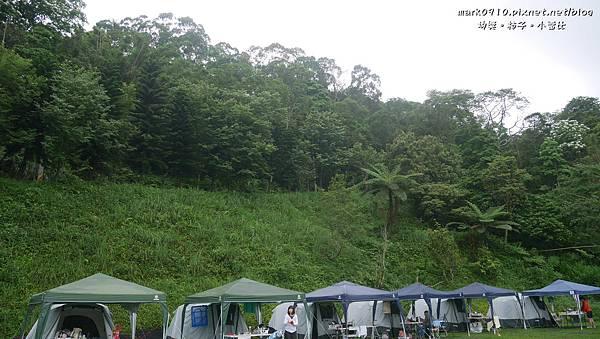 P1270551昨晚就是在帳篷後面這片小坡地就有好多螢火蟲.JPG