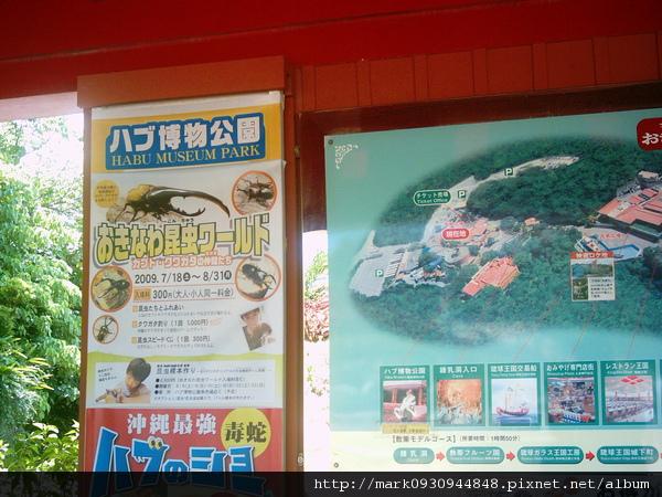 文化王國這邊還有一個毒蛇公園