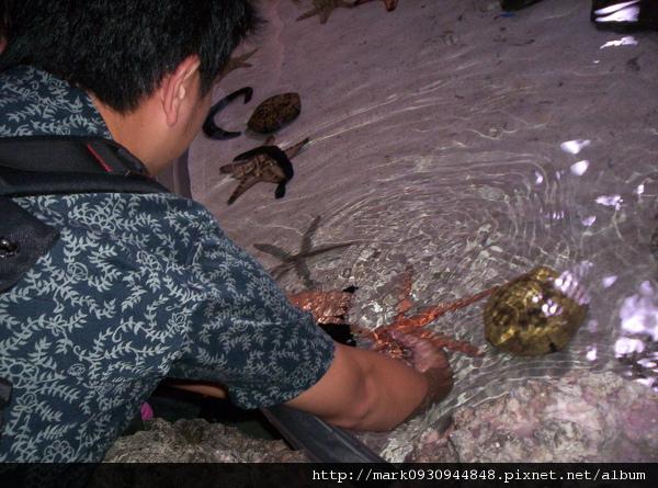 美之海水族館的體驗區