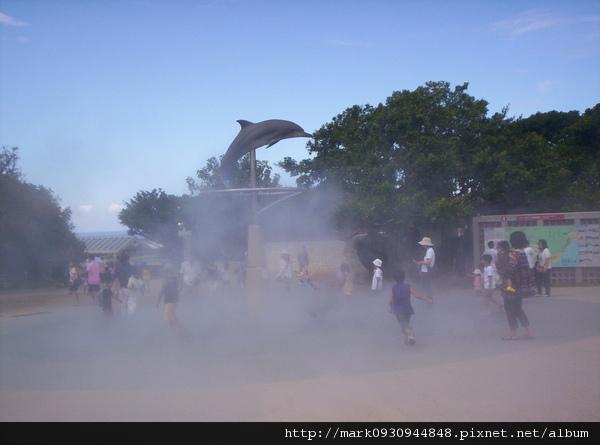 海洋博公園的海豚噴霧