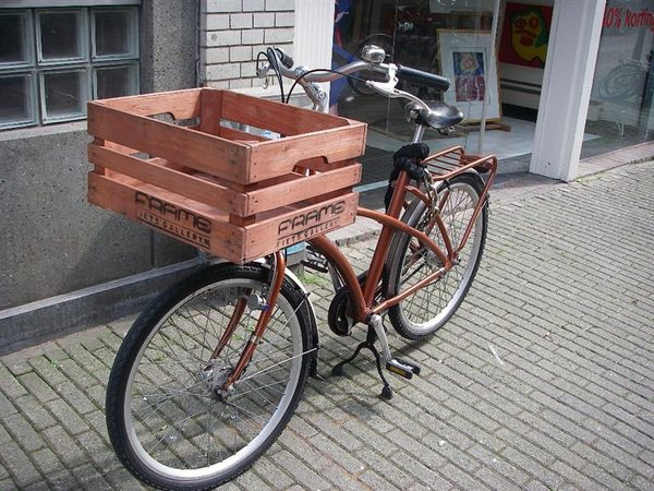 荷蘭的菜籃腳踏車.JPG