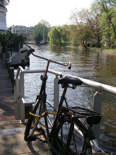 河邊的單車.JPG