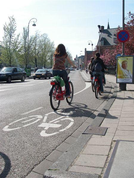 腳踏車專用道.JPG