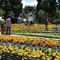 小瑞士花園