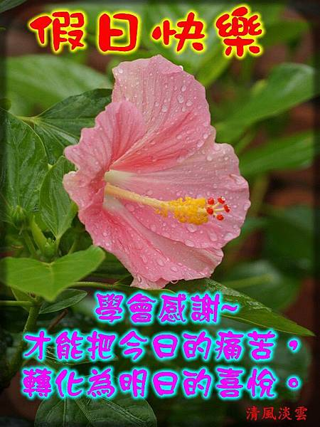 IMG_4688.JPG