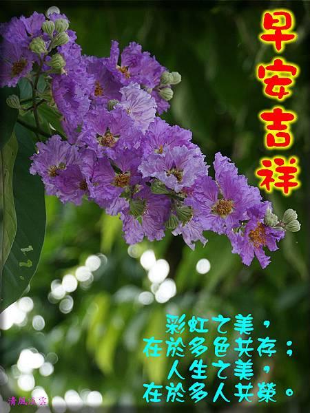 DSC0896090早安吉祥.jpg