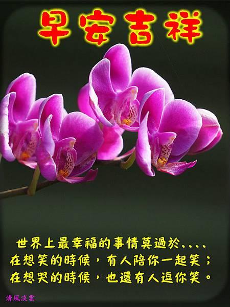 DSC08978104早安吉祥.jpg