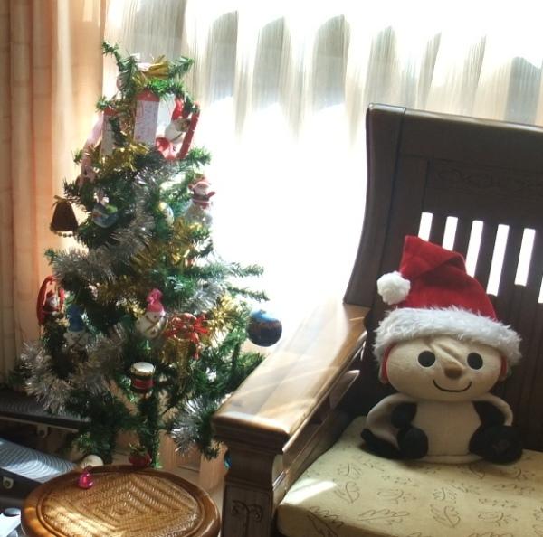 1215 01 聖誕樹