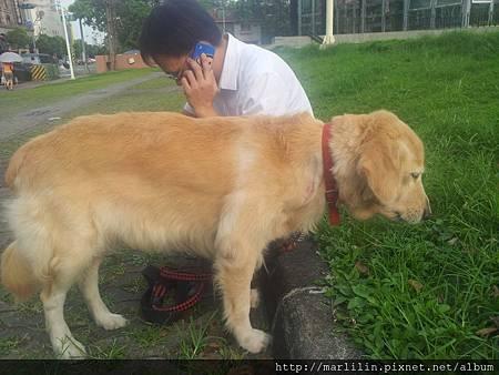 沮喪的兩人狗20120905