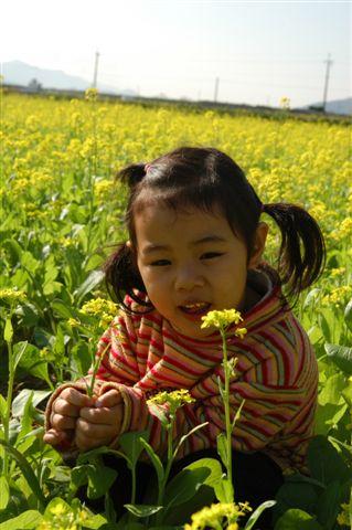 芊在油菜花.JPG