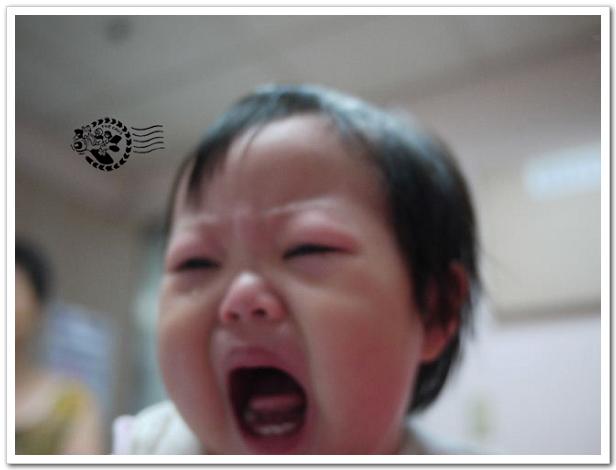 日本腦炎-10.jpg