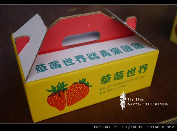 草莓世界-21