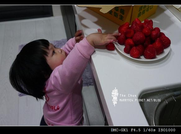 草莓世界-25