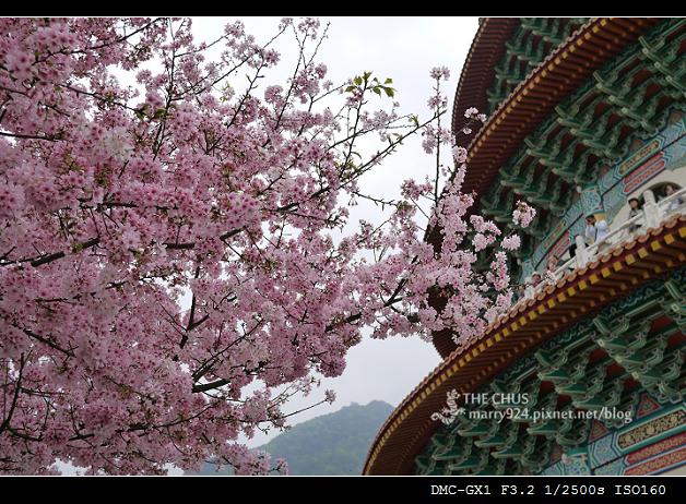 2012天元宮-15