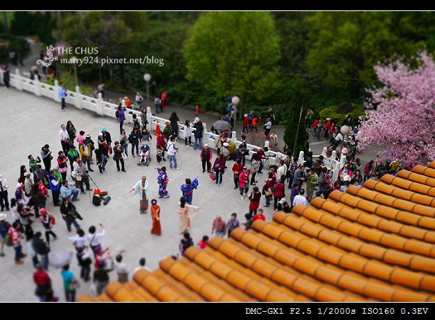 2012天元宮-20