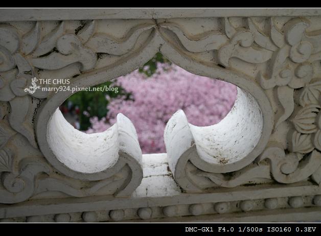 2012天元宮-22