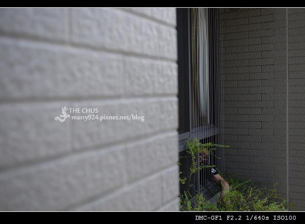形隱鐵窗-11.jpg