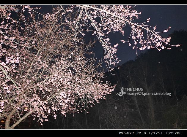 武陵-15.jpg