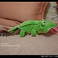 鱷-5.jpg