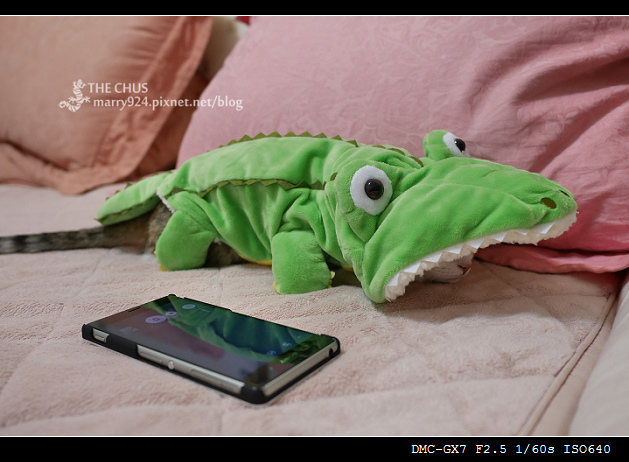 鱷-6.jpg