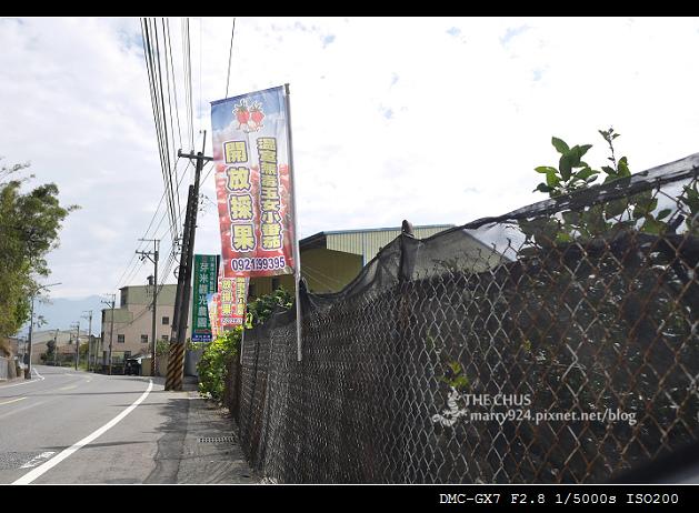 芽米-1.jpg