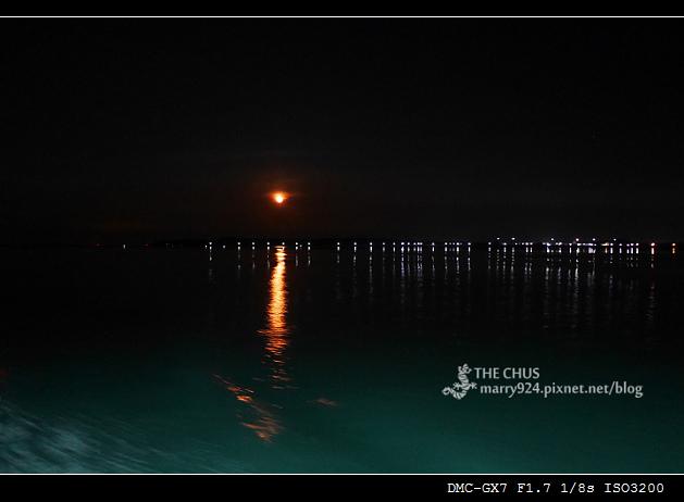 夜釣-29.jpg