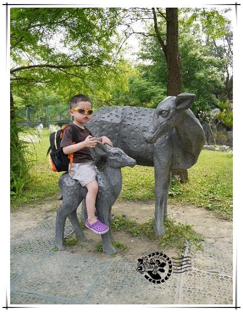 動物園-4.jpg