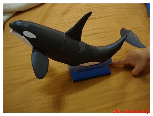 鯨魚1.jpg