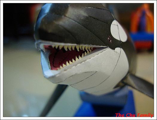 鯨魚4.jpg