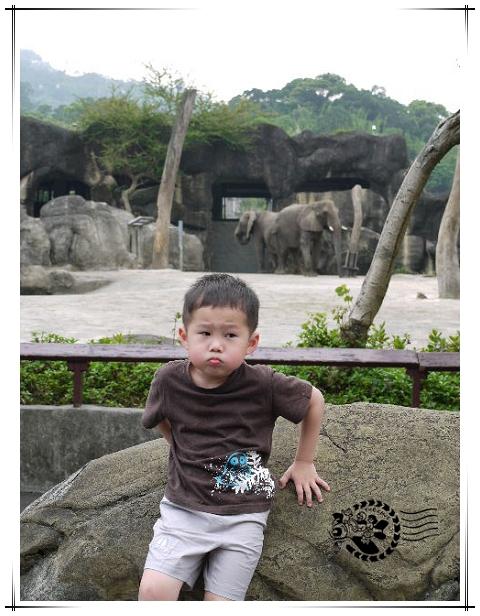 動物園-14.jpg