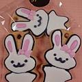 兔子手工餅乾.jpg