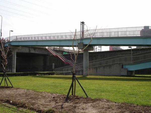 華中橋的之字形引道