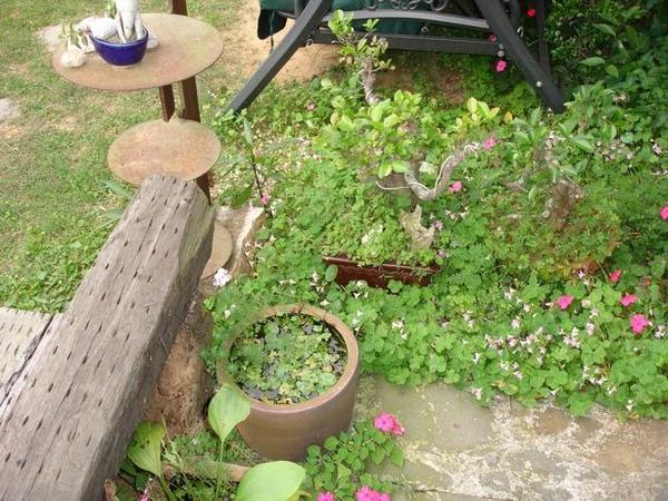 12-庭園小造景