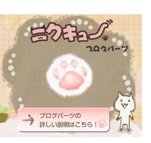 貓掌6.jpg