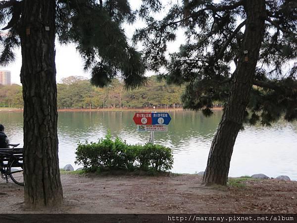 D3-22大濠公園可釣魚區跟不可釣魚區分界.JPG