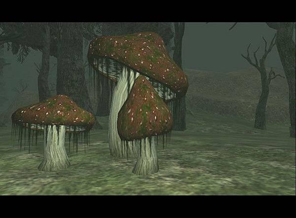 奈克圖羅特產大香菇