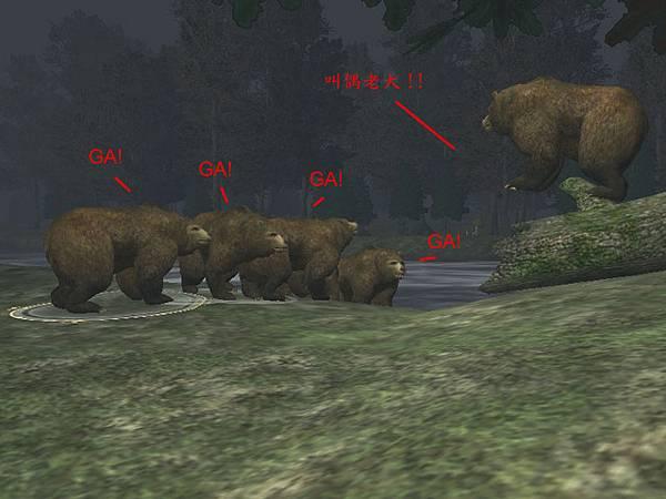 NF的熊群