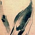 Musashi, Cormorant.jpg