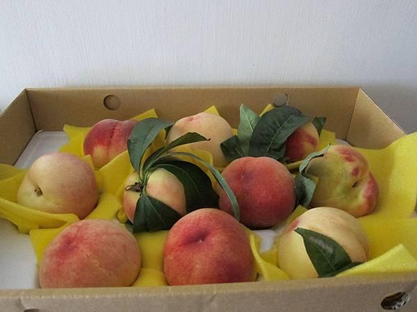 水蜜桃禮盒